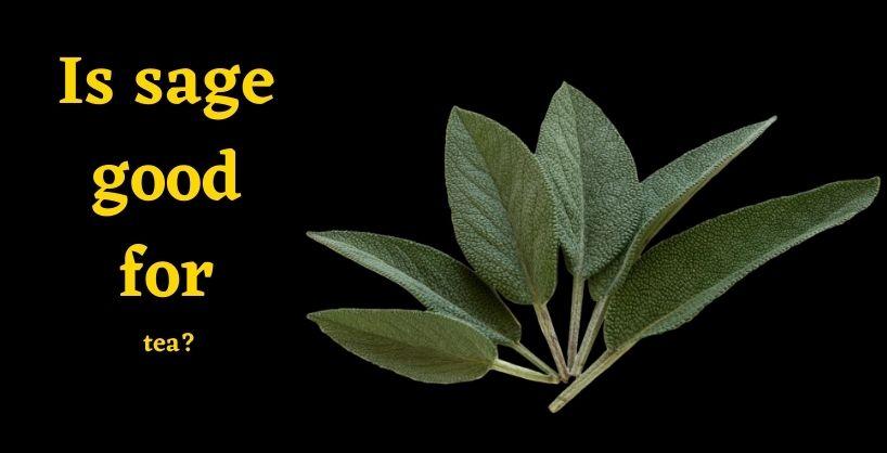 health benefits of sage