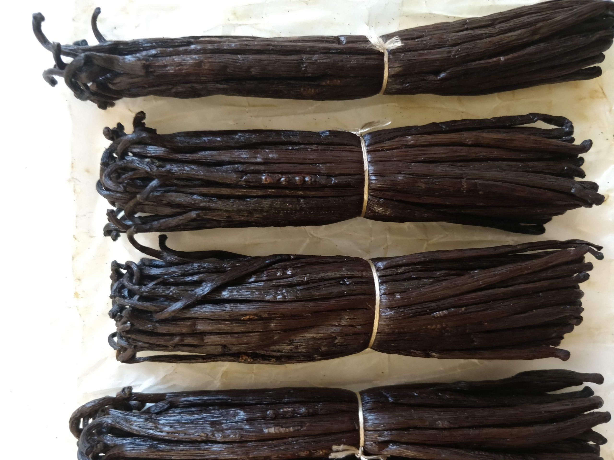 Knitspice-Grade A vanilla beans